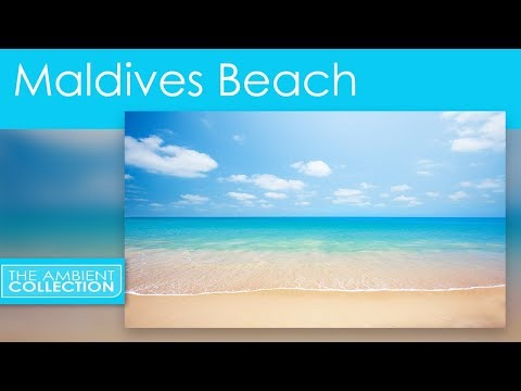 Tropical Beaches DVD  Relax With 30 Minutes Beach From The Maldives With Ocean Sounds