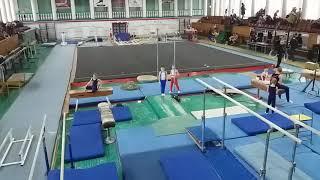 Соревнования спортивная гимнастика  3 разряд Арефьев Егор(6)