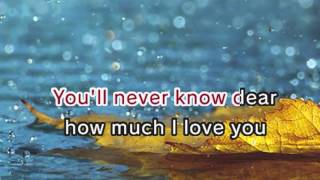 You Are My Sunshine - Nursery Rhymes (Karaoke and Lyrics Version)
