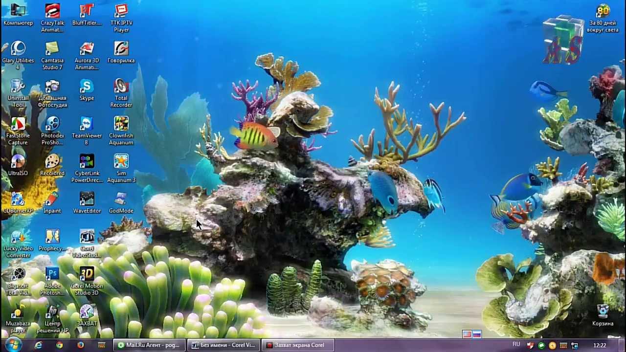скачать бесплатные анимированные обои аквариум для рабочего стола для