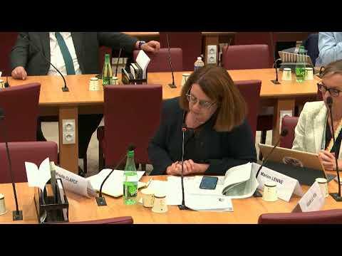 Commission des affaires étrangères : Louise Mushikiwabo, Organisation mondiale Francophonie