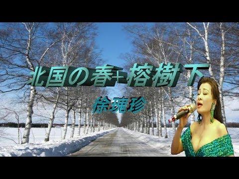 北国の春(日)+榕樹下(國)  Cheng-te. tsao點好聽老歌千首記詞歌后徐瑰珍108年9月17日