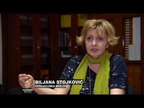 Srbija: Zbog Darwina moguće i ostavke
