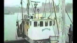 Navena 1984 Trawler beached, Scarborough UK - 2