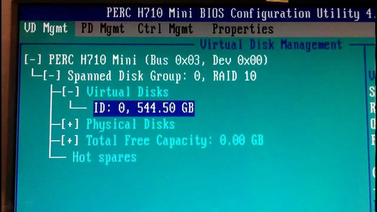 Dell Perc H710 Mini Bios Overview for Dell PowerEdge Server