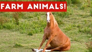 Download The Funniest Farm Animals Home Video Bloopers of 2017 Weekly Compilation | Funny Pet Videos Mp3 and Videos