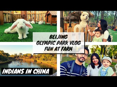 Olympic park Beijing | Explore Beijing Vlog | Fun with Farm Animals | Indian family living in china