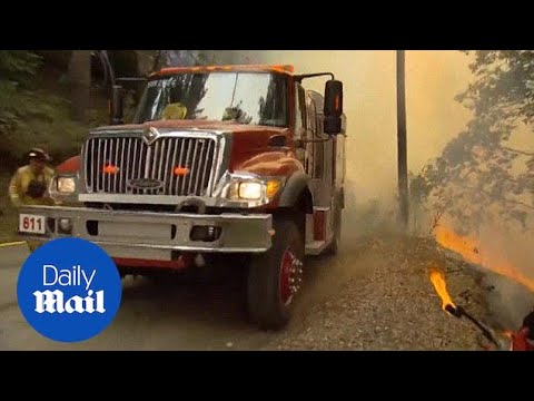Wildfires in Big Sur destroys dozens of homes, 32K acres - Daily Mail