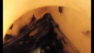 масло в расширительном бачке(, 2015-06-02T00:36:22.000Z)