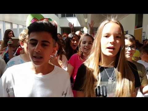 THE AMAZING G11 VIENNA SCHOOL LIPDUB 2017