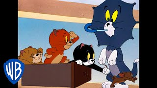 Tom and Jerry | The Triplets Are Up To No Good | Classic Cartoon