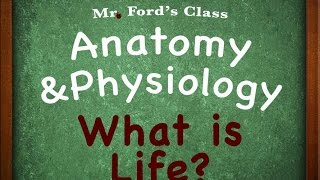 Introduction To Anatomy Physiology : Characteristics of Living Things