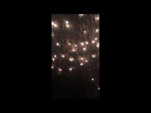 Twinkling Mini Lights (20-percent random twinkle)