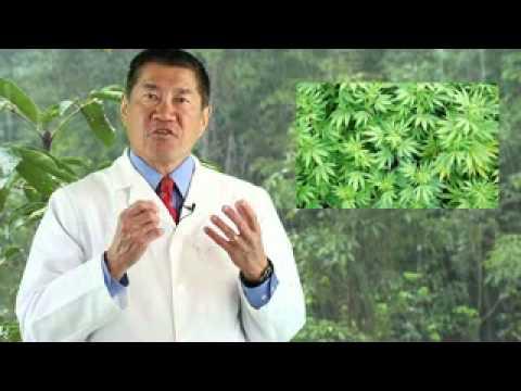Complementary Therapy | Marijuana Autoimmune Disease
