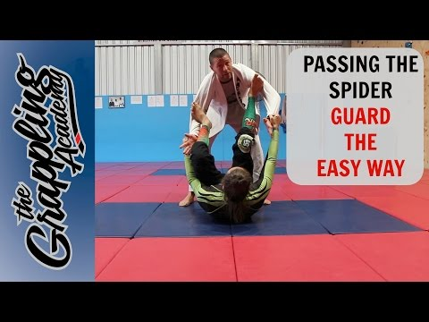 Passing the SPIDER GUARD - The EASY WAY!