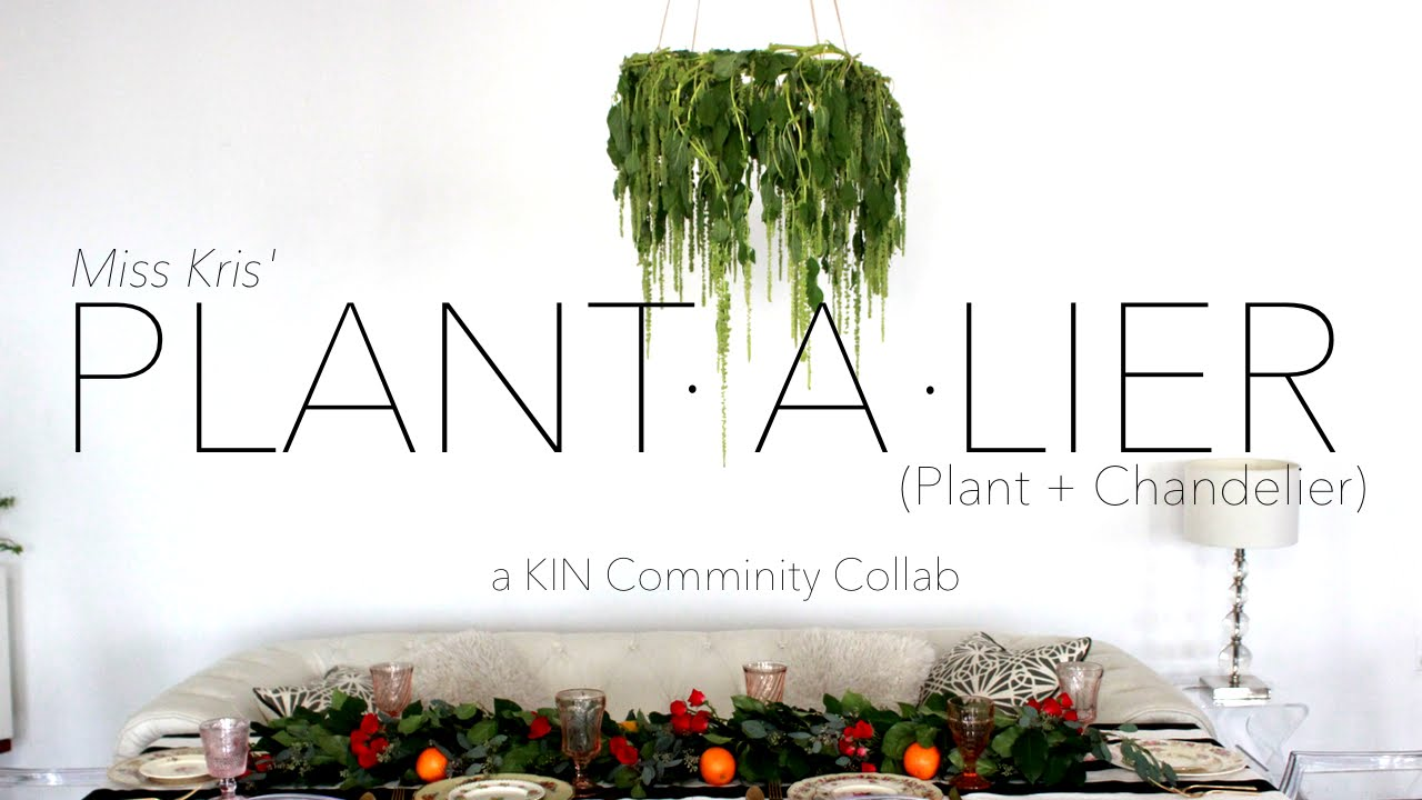 Diy plant a lier plant chandelier plus kin community series diy plant a lier plant chandelier plus kin community series announcement youtube arubaitofo Choice Image