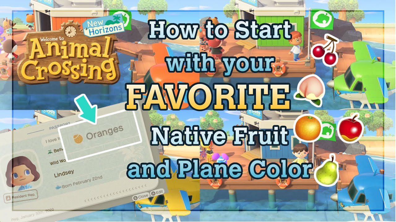 Island Reset Guide How To Choose Your Native Fruit And Plane Color In Animal Crossing New Horizons Youtube