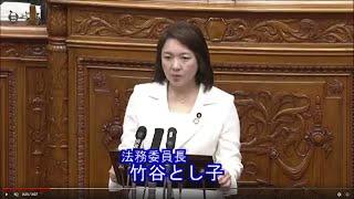 参議院本会議・法務委員長報告(2019/12/4)