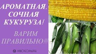 Как сварить кукурузу мягкой, сочной и ароматной за 30 минут Ⓜ MNOGOMAMA
