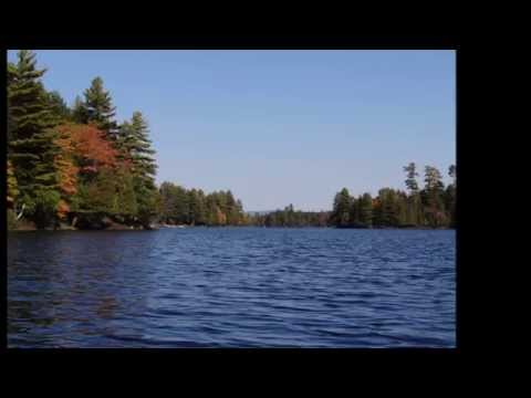 ~~ Raquette Lake Outlet Bay ~~