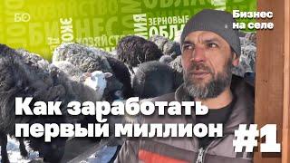 видео Бизнес план по разведению овец – выращивание в домашних условиях как бизнес