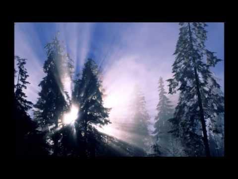 Зима (Winter) - чарующая мелодия - Видео приколы смотреть