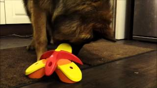 German Shepherd Triad Dog Puzzle thumbnail