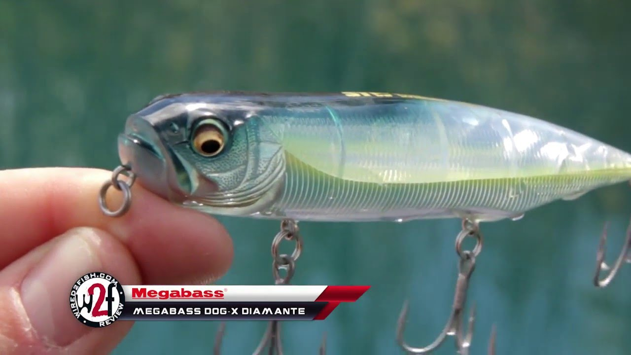 Megabass Dog-X Diamante Underwater Video