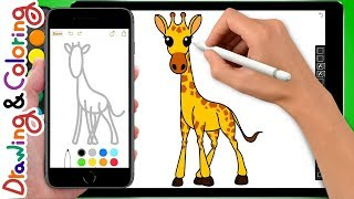 giraffe | 기린 그리기 | Learn Drawing & Coloring - Coloring Pages for kids