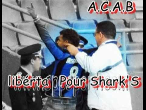 Ultras Shark 2006 - Chant 2011/2012 : Liberta o fuck 3la Police