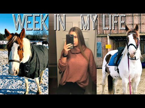 College Equestrian Week In My Life | Working Full Time + New Job