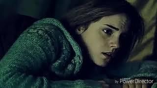 Гарри и Гермиона- правильная девочка