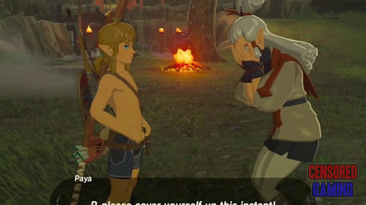Zelda Has Sex 12