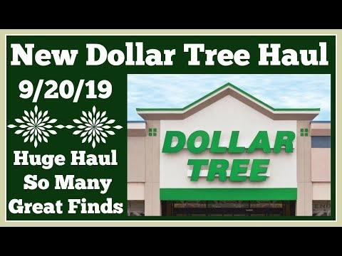 Huge Dollar Tree Haul 🤑 9/20/19 So Many New and Great Finds