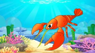 Thế giới động vật | Dạy bé nhận biết các loại động vật dưới biển | Bé thần đồng
