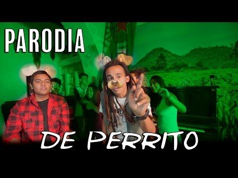"Luis Fonsi - Despacito ft. Daddy Yankee PARODIA ""DE PERRITO""  | MONOLOCO 🐒"