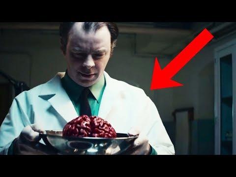 بعد 63 عام على وفاته.. هل تعلم ماذا حدث لمخ ينشتاين أسرار تعرفها لأول مرة