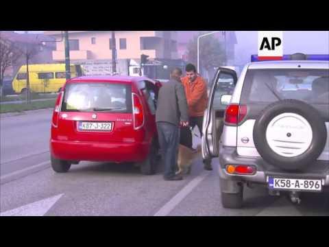 Stray dogs taking over Sarajevo