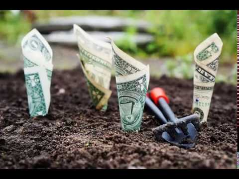 Совет, где найти деньги на собственную ферму