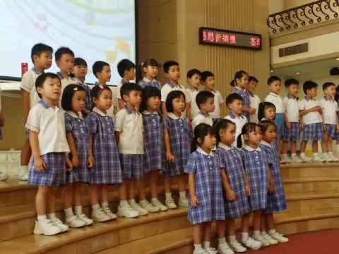 幼稚園 聖母 井荻聖母幼稚園