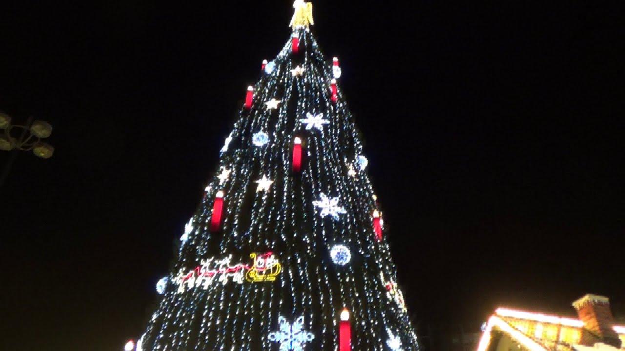 Größter Tannenbaum.Der Dortmunder Weihnachtsbaum