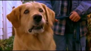 air bud horror trailer
