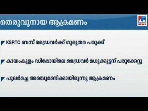 Kayamkulam Stray Dog Attack