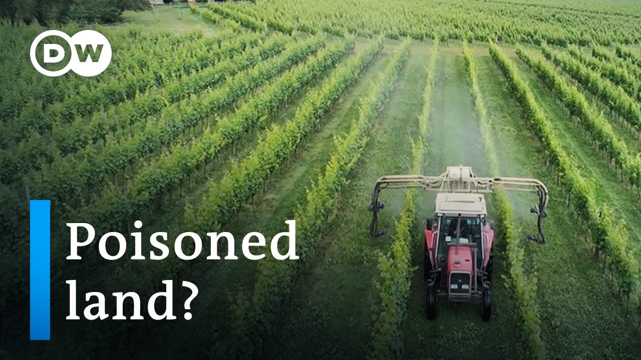 Is Parkinson's disease related to pesticide use?   DW Documentary
