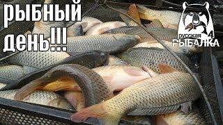 Рыбный день! - Русская Рыбалка 4/Russian Fishing 4