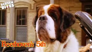 """Beethoven's 5th"" - Official Trailer"