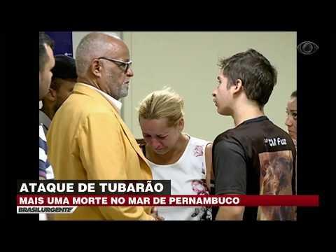 Jovem é Atacado Por Tubarão E Morre Em Recife