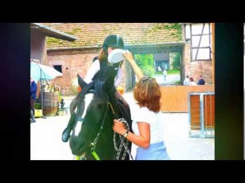Geburtstagswunsche Reiter Lustige Wunsche Zum Geburtstag