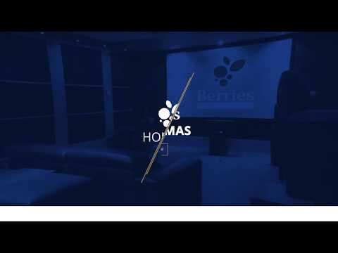 World Standard Home Cinema Engineering Service Providers (Berries Home Cinemas-Berries Tech Inc.)