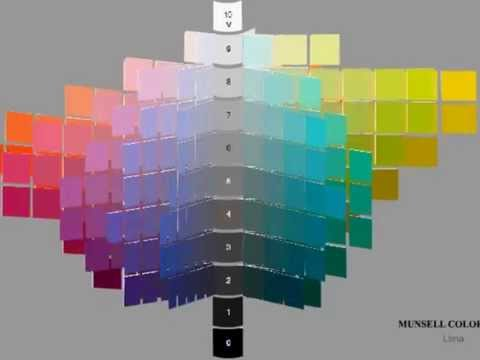 Munsell Color Tree  YouTube